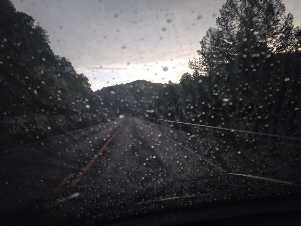 This is one I took a while back but hadn't shared. I just liked that the focus was on the rain. | iPhone 5 - no filter